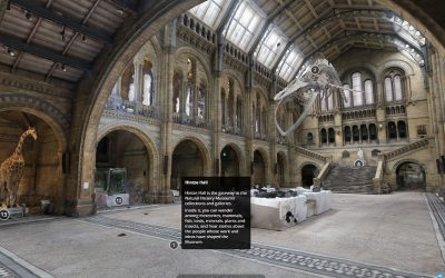 Take a virtual museum tour
