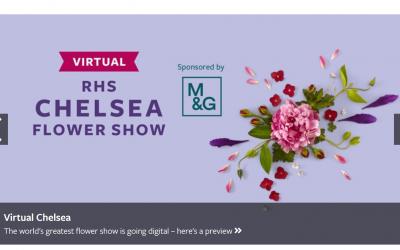 Visit the virtual Chelsea Flower Show
