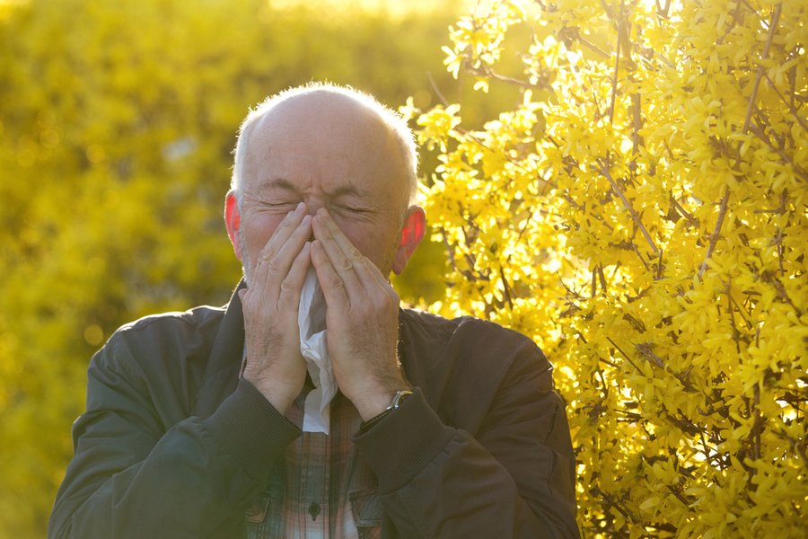 Hay fever or COVID-19? Clarifying the symptoms